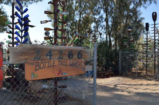"""""""The Bottle Ranch"""""""